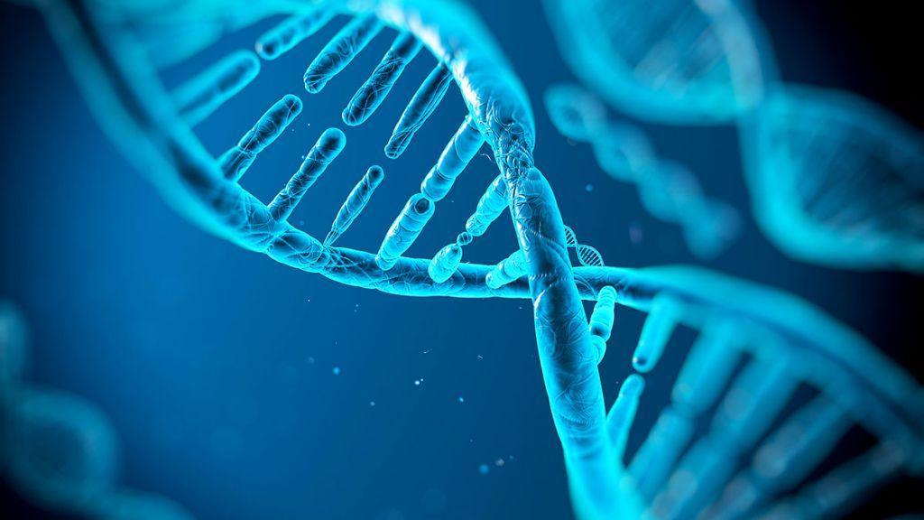 Commandez un test ADN en ligne